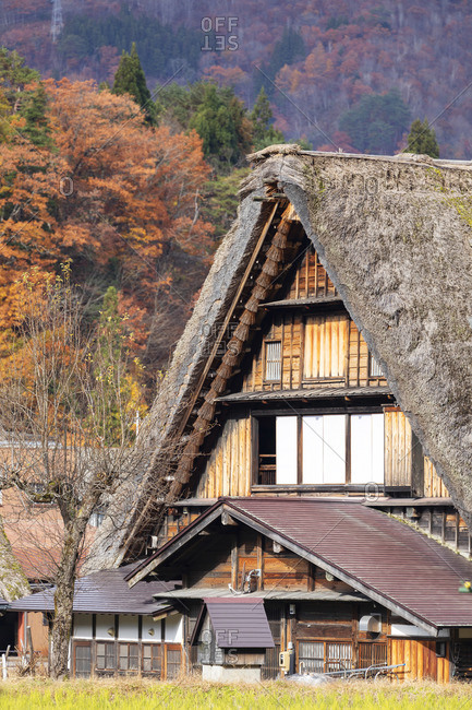 Traditional house of Ogimachi (UNESCO World Heritage Site), Shirakawa-go, Toyama Prefecture, Japan