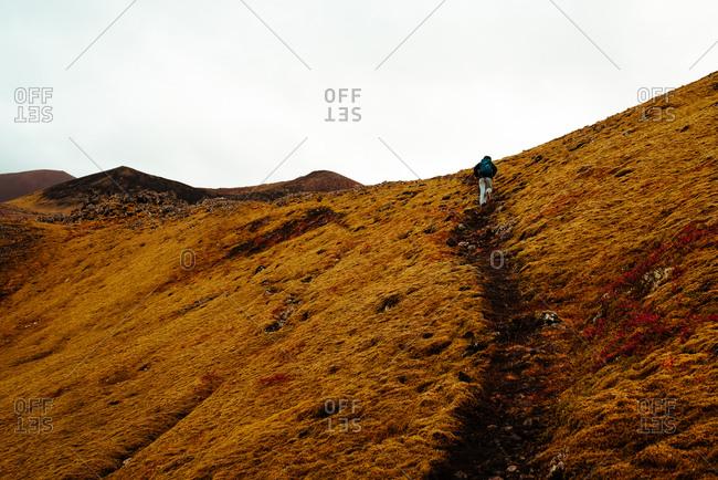 Tourist hiking up hill, Reykjav�k, Gullbringusysla, Iceland