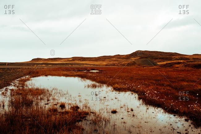 Autumn landscape, Reykjav�k, Gullbringusysla, Iceland