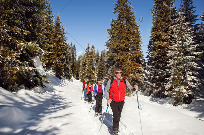 Mature couple and daughters snowshoeing in snow covered forest landscape, Styria, Tyrol, Austria