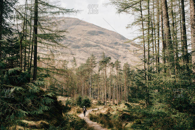 Woman walking through forest, Trossachs National Park, Canada