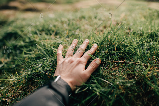 Female hand touching green grass