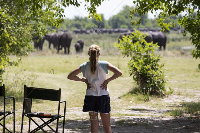 Twelve year old girl looking at elephants, Moremi Reserve, Botswana