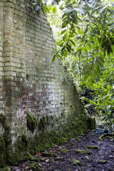View along old brick wall overgrown with moss.