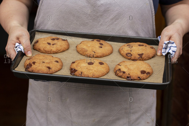 Close up of person holding baking tray with freshly baked chocolate chip cookies.