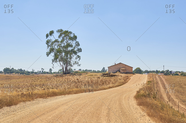 Dirt road passing through rural countryside area with blue sky and farm buildings, Portugal