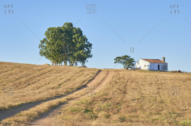Dirt road in a rural countryside area with blue sky and farmhouse, Portugal