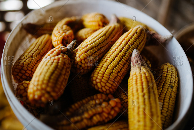 Group of corn in a plastic box.