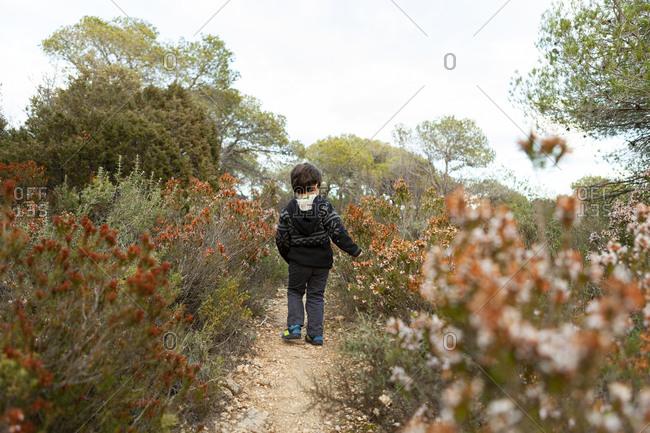 Little boy walking in the woods in Siurana Mountains