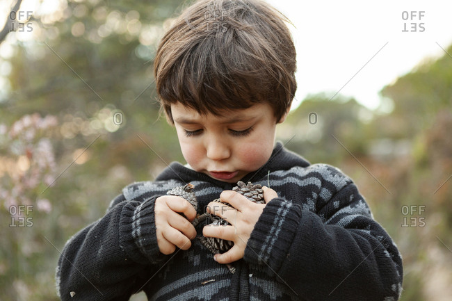 Little boy holding pinecones in the woods