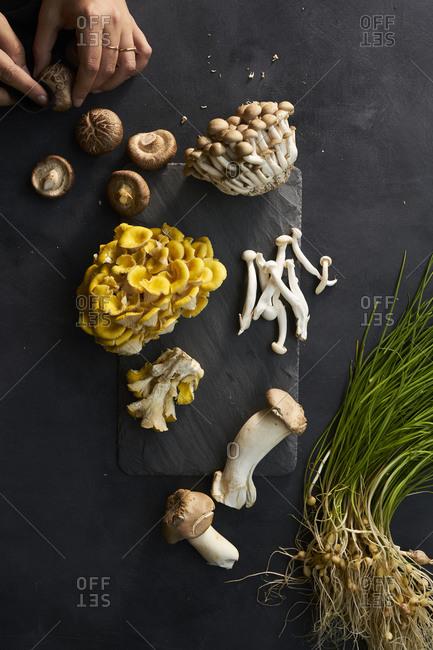Assortment of Fresh Raw Mushrooms on black slate surface