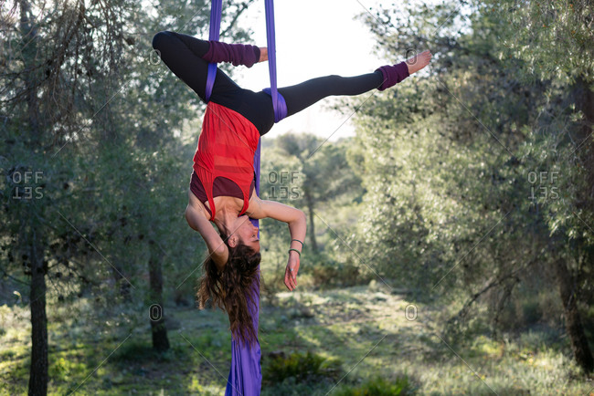 Young girl acrobat. Practicing aerial silks. Woman doing circus stunts with clothes in the forest. Inverted hip lock position.