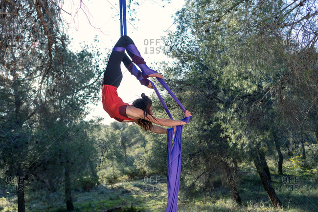 Young girl acrobat. Practicing aerial silks. Woman doing circus stunts with clothes in the forest. Scorpio position.