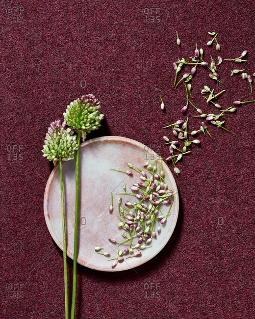 Overhead Still life on burgundy, felt fabric with round plate, flowers