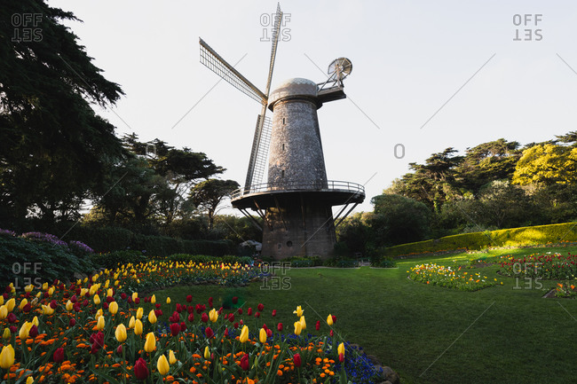 Windmill in fall season full of flowers