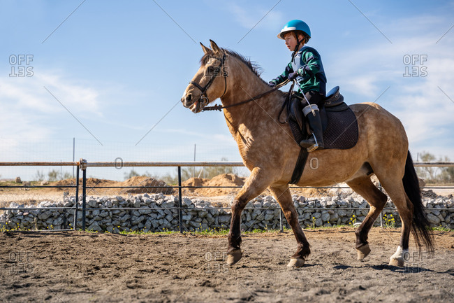 Low angle side view of preteen jockey in protective equipment riding dun horse during lesson in equestrian school