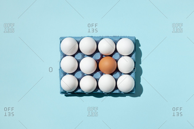 Top view of single brown and white eggs placed in paper tray demonstrating concept of difference on blue background in studio