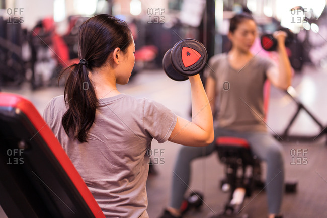 Powerful ethnic female athlete in sportswear doing dumbbells biceps sitting on bench looking at mirror in modern fitness center