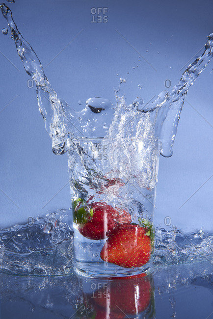 Cold tasty clean water spattering from glass with falling red gourmet strawberries placed on reflective transparent surface on blue background