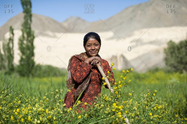 A woman takes a break while working in her wheat fields near Lamayuru in Ladakh in India