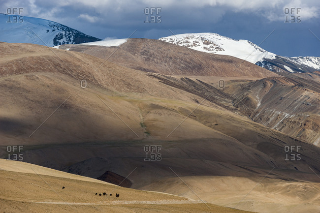 Tso Moriri lake in the Himalayan region of Ladakh in north India is at an altitude of 4595m