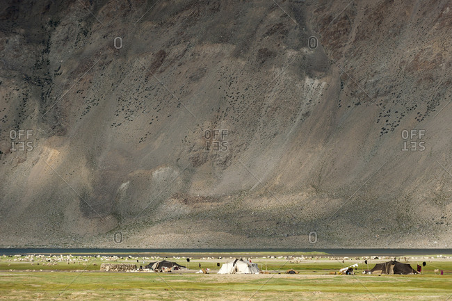 Traditional black yak wool hair tents coexist with more modern white models as hundreds of animals graze in the background.