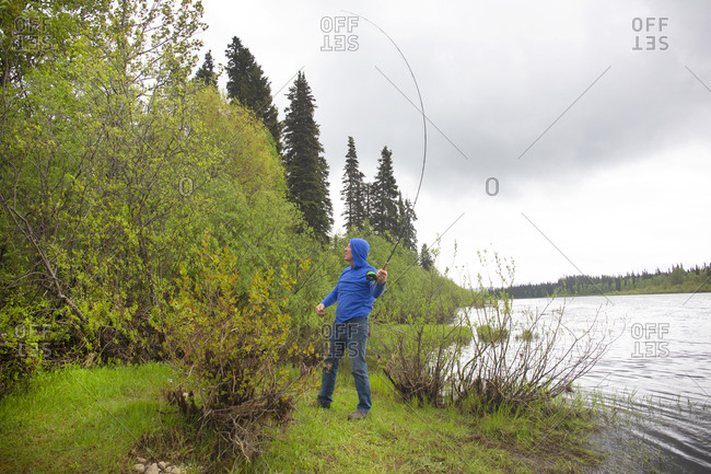 Man fly fishing has caught hook in trees along Buckinghorse River in British Columbia, Canada