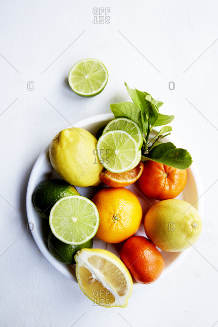 An assortment of citrus fruit arranged on a white plate on a white background with morning light