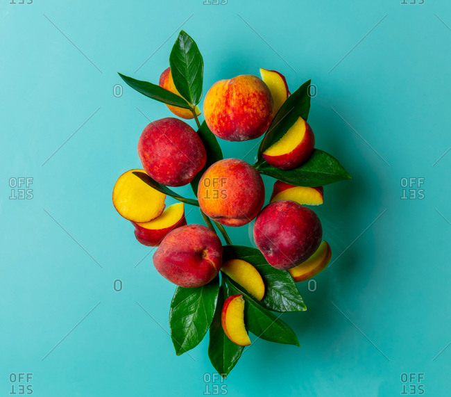 Group of peaches with leaves on a blue background