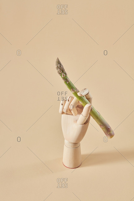 Wooden dummy hand holds natural fresh asparagus spear as a pan or paintbrush and ready for painting on a sand yellow background, copy space.