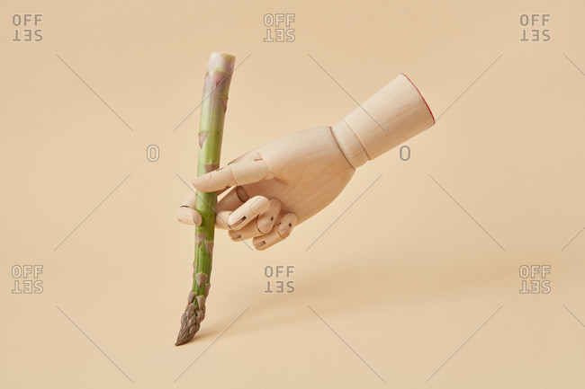 Freshly picked natural asparagus spear in a wooden hand of mannequin as a paintbrush or pan for writing or painting on a sand yellow background, copy space.