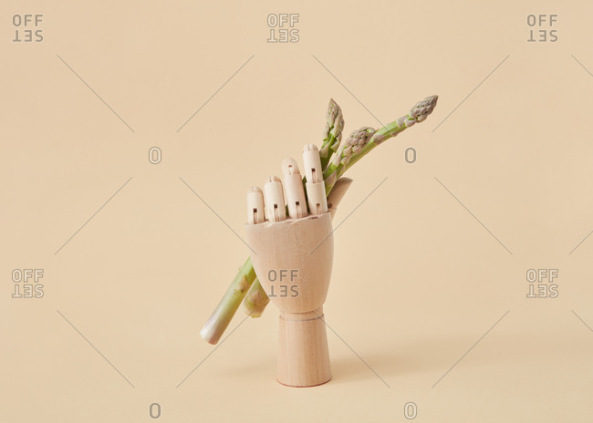 Wooden mannequin hand holds bunch of freshly picked organic natural asparagus vegetables on a sand yellow background, copy space.
