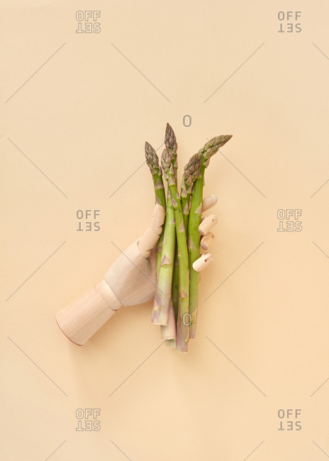 Bunch of home grown fresh natural asparagus vegetables in a wooden mannequin hand on a sand yellow background, copy space. Top view.