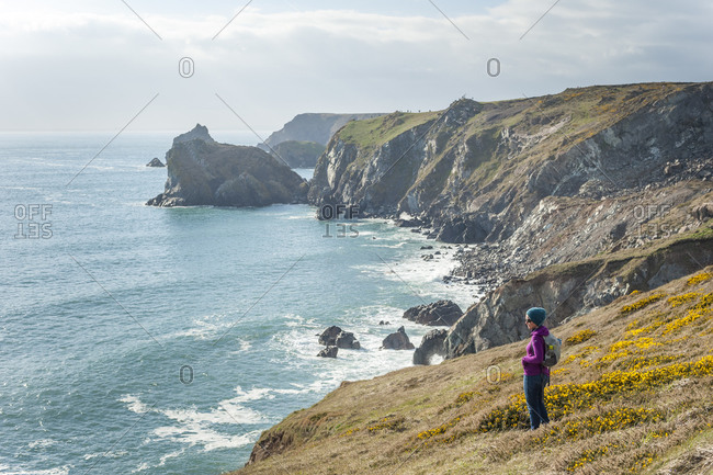 A woman looks out over dramatic Cornish coastline near Kynance Cove on the Lizard Peninsula in the British Isles
