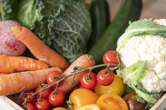 Fresh organic vegetables ready to eat