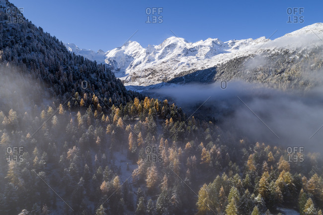 Switzerland- Canton of Grisons- Saint Moritz- Drone view of fog floating over forested valley of Morteratsch Glacier in autumn