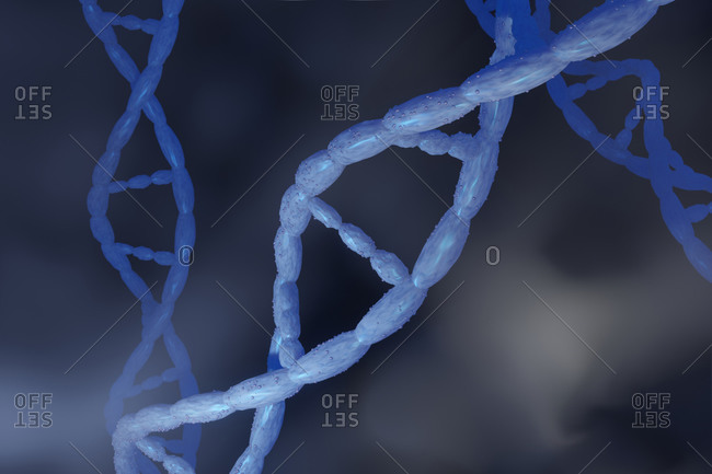 3D rendered illustration- visualization of DNA double Helix which carry genes of biological organism