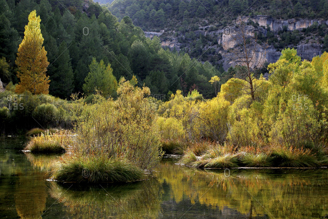 Spain- Province of Guadalajara- Scenic view of Alto Tajo Nature Reserve in autumn