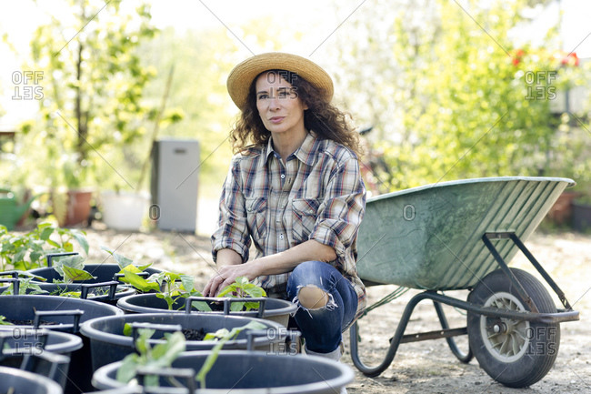 Portrait of confident mature woman crouching by plants against wheelbarrow at garden