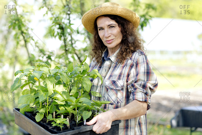 Portrait of confident mature woman holding tray with green plants at community garden
