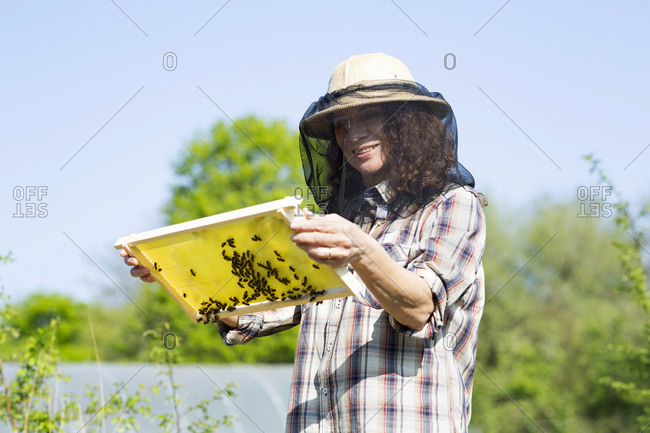 Smiling mature female beekeeper holding honeycomb against sky on sunny day