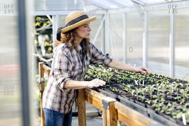 Confident female farmer working at greenhouse