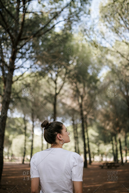 Rear view of young woman with hair bun looking away in forest