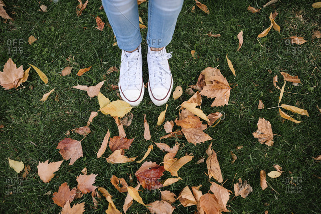 Low section of teenage girl standing by dried autumn leaves on grass at park