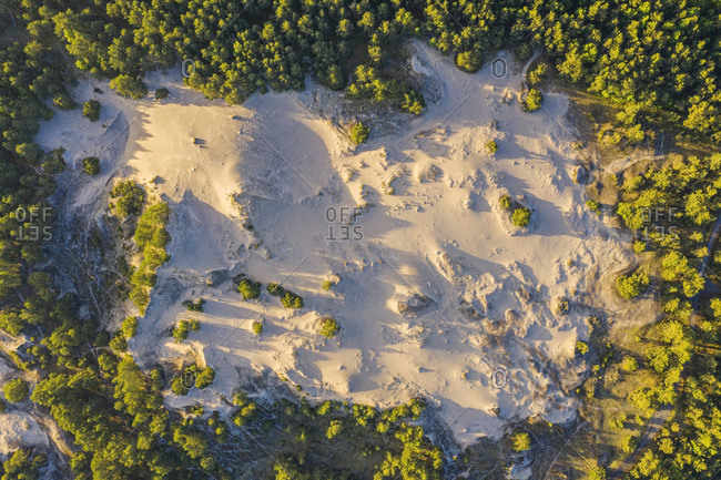 Poland- Pomerania- Leba- Overhead view of sand dune at Slowinski National Park