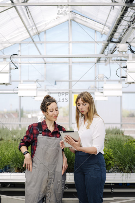 Gardener and businesswoman using tablet in greenhouse of a gardening shop