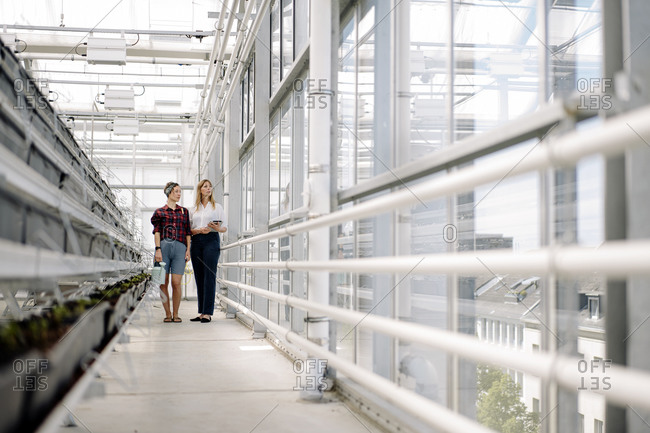 Gardener and businesswoman standing in greenhouse of a gardening shop