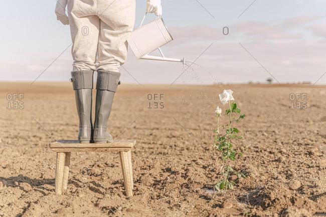 Woman standing on stool- watering flower on barren field