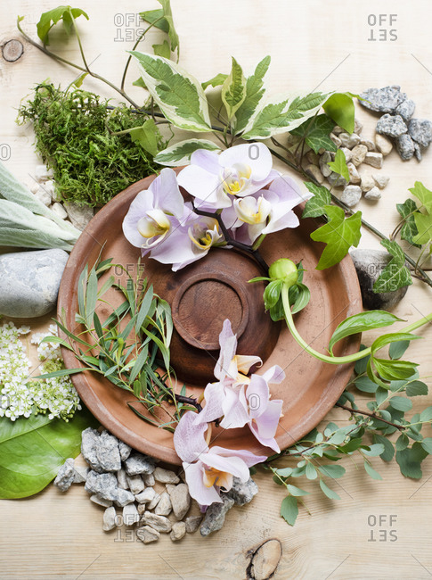 Composition with a clay plate, plants, flowers and decorative stones
