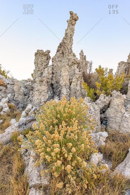 Tufa rock formations on the shore of Mono Lake in California